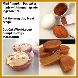 Pumpkin cake for dogs