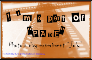 Photo A Day Experiment PADE