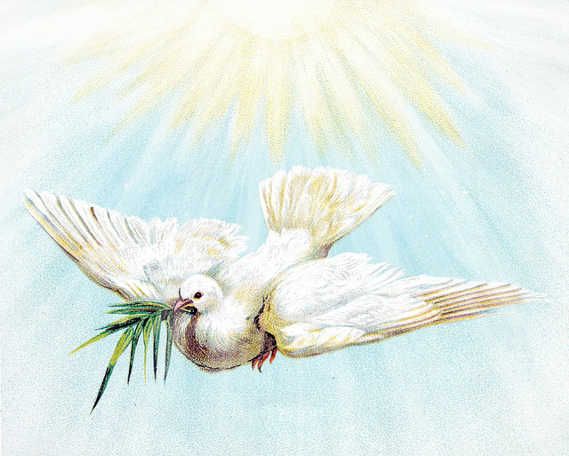 Novena to the Holy Spirit for the Seven Gifts
