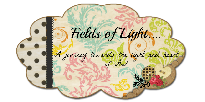 Fields of Light
