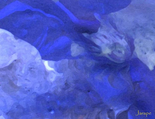 Arrecife 1