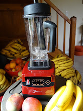 Blender Optimum