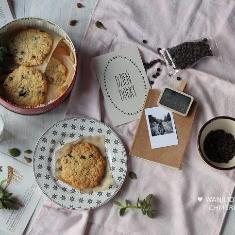 Ciasteczka owsiane z czekoladą i fistaszkami