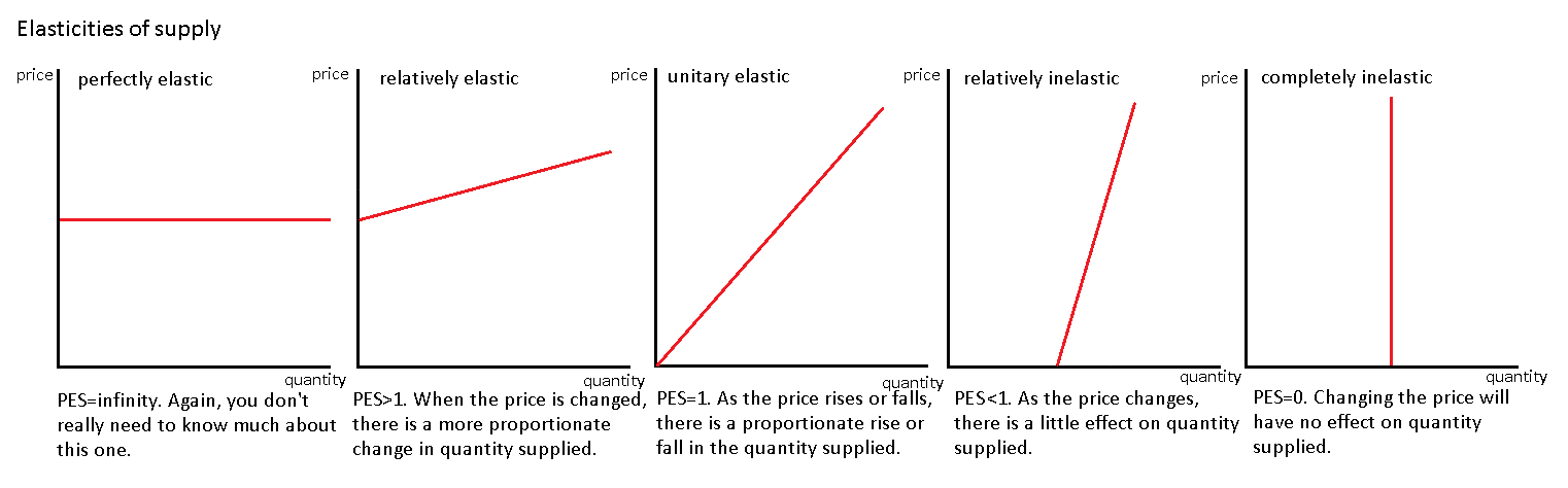 essay on supply and demand and price elasticity