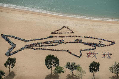 Children form of a shark on a beach with a detached fin as part of Kids Ocean Day event aimed at raising awareness on shark fin trade and consumption in Hong Kong .  More than 70 million sharks are killed every year, with Hong Kong importing about 10,000 tonnes annually for the past decade, according to environmental groups. Most of those fins are then exported to mainland China.