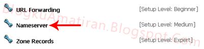 Name Server Setting On Free Domain Cu.cc - Blog Amatiran