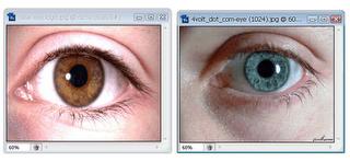 Trik Menggabungkan Gambar Dengan Photoshop