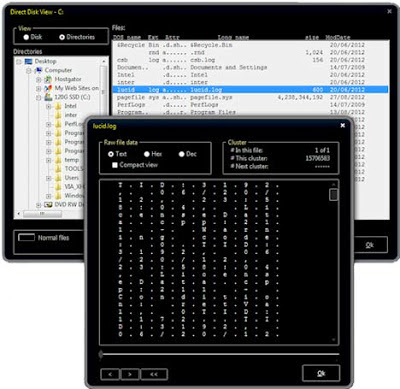 Solway Clean Disk Security v8.0