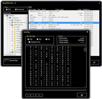 Solway Clean Disk Security v8.0