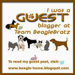 JFF Guest Blogger