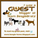 JFF Guest Blogger