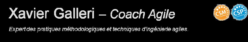 Xavier Galleri - Coach Agile