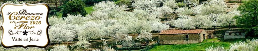 Primavera y Cerezo en Flor en el Valle del Jerte