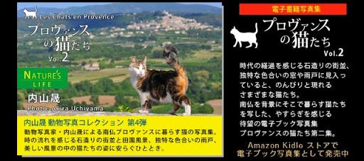 20130719-DSC_0002.jpg
