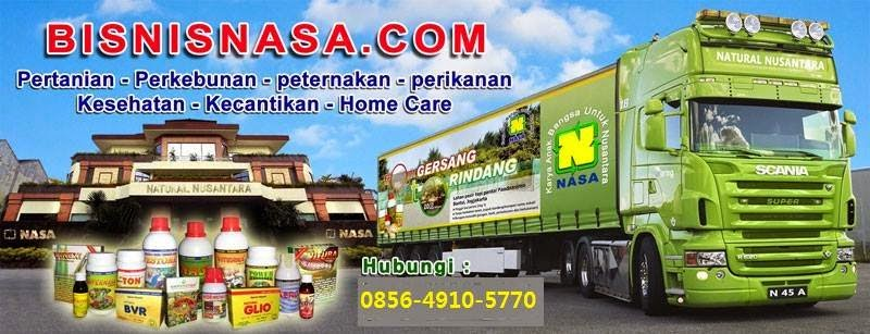 DISTRIBUTOR NASA INDONESIA