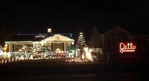 Ditto Christmas Lights