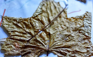 activités manuelles feuille automne