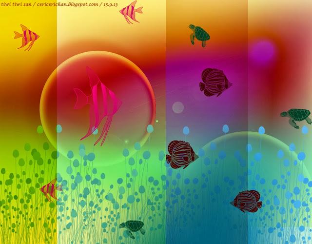 wallpaper, ikan, aquarium