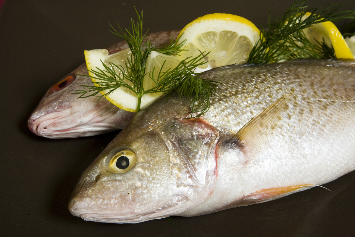 Polish classic cooking filet of sole polish style plus for Filet of fish