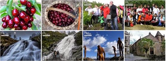 Excursión al Valle del Jerte. Cerecera 2014