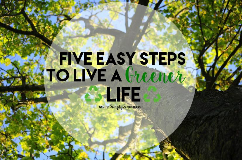5 Easy Steps to Greener Living
