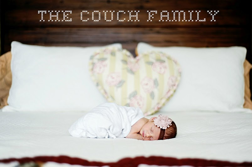 The Couch's Nest