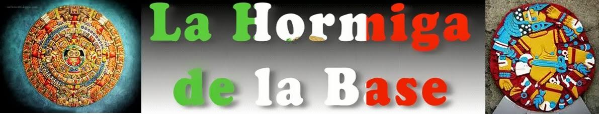 LA HORMIGA DE LA BASE: