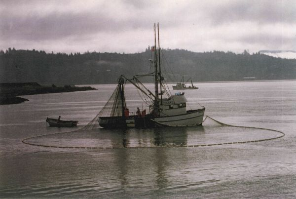 Pacific northwest fishing fleet for Pacific northwest fish