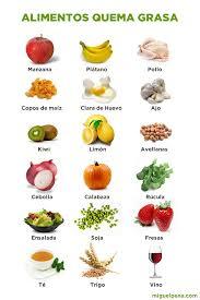 Dieta quemadora de grasa – Dietas de nutricion y alimentos