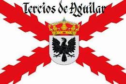 Bandera de los Tercios  Aguilar