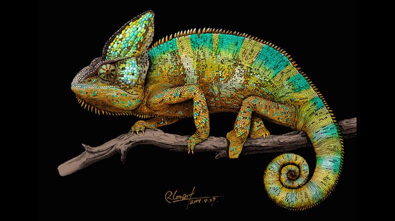 Intrincadas ilustraciones de animales explosionan de color y vida