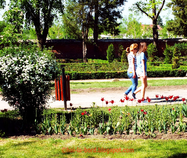 flori si fete 1 mai 2012 mogosoaia