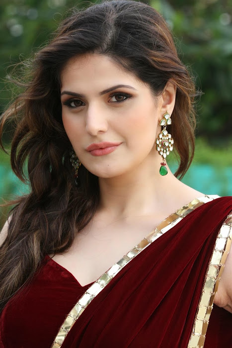 zarine khan glamorous in saree actress pics