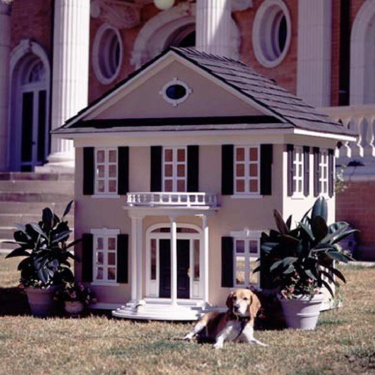 cadeaux 2 ouf id es de cadeaux insolites et originaux cadeau de r ve pour votre chien. Black Bedroom Furniture Sets. Home Design Ideas