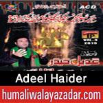 http://www.humaliwalayazadar.com/2015/10/adeel-haider-nohay-2016.html