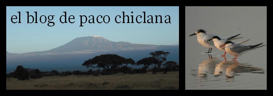 el blog de paco chiclana