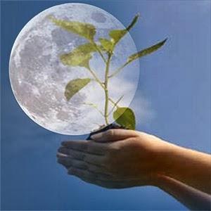 ☥ Moon Planting ☥