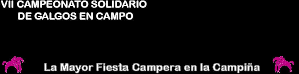 Campeonato Solidario de Galgos en Campo