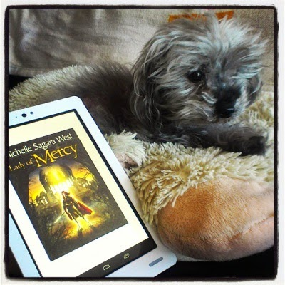 Murchie lays on his fuzzy pillow. A white e-reader is propped up against it. Its screen shows the cover of Lady of Mercy, featuring an armour-clad, pale-skinned woman standing in front of what appears to be a ruined church.