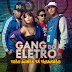 GANG DO ELETRO - LOBO MAU DIGITAL