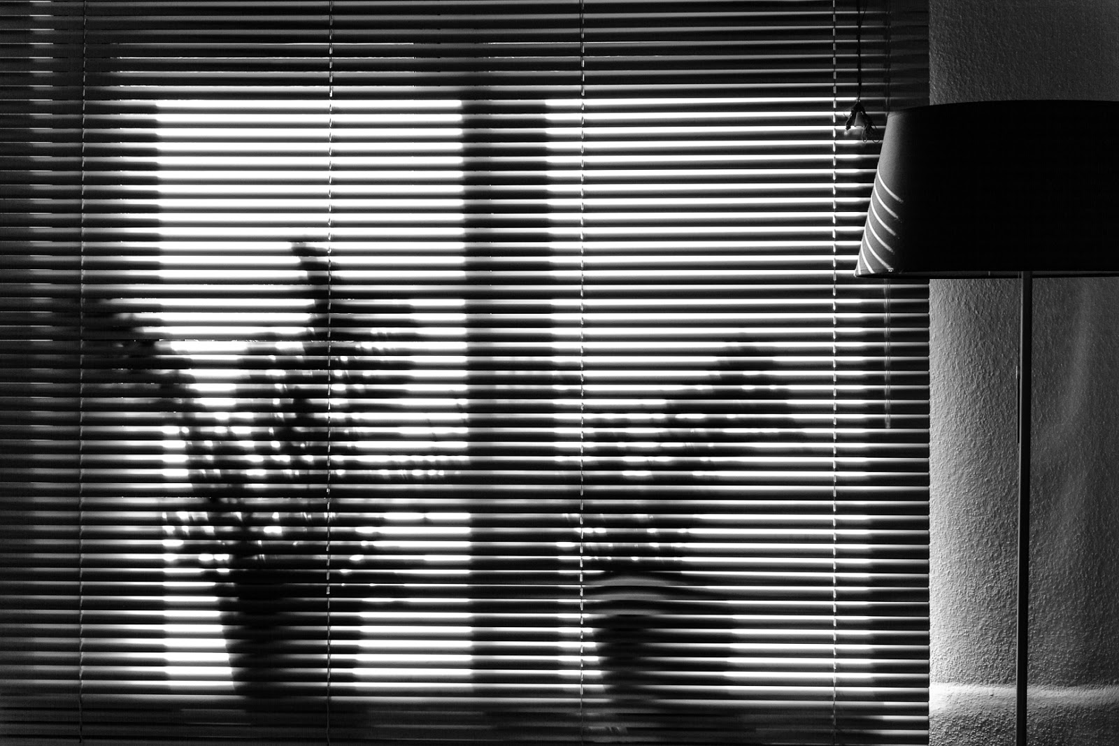 Matthew G. Beall Black and White vision driven photography  Light, Time and Shadows 2  2014