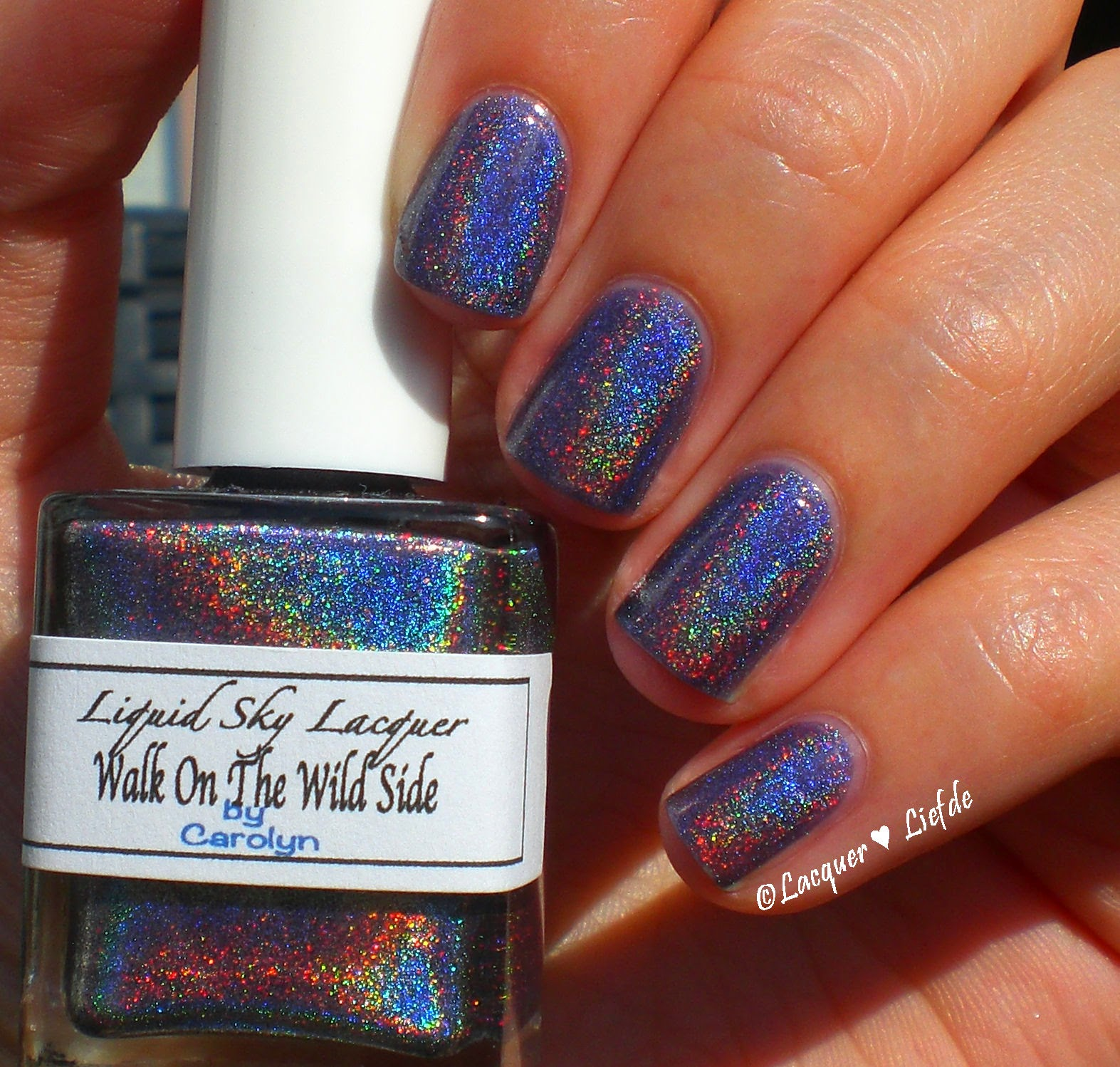 Walk on the wilde side Liquid Sky Lacquer