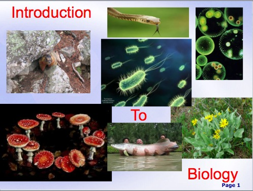 intro to biology Portal:biology/intro biology is the natural science that involves the study of life  and living  modern biology is a vast field, composed of many branches.