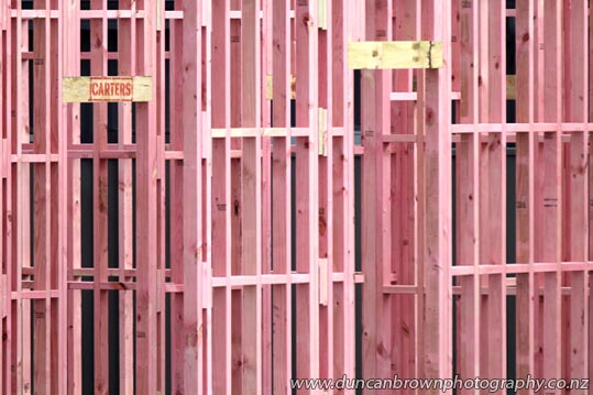 Carpentry: It's a man's domain - Pink timber framing on a house being built in Napier Rd, Havelock Northphotography