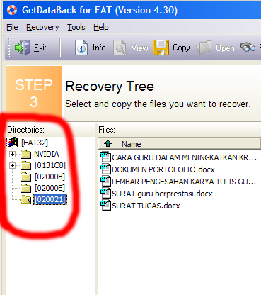 Recovery Data Terformat 9_1