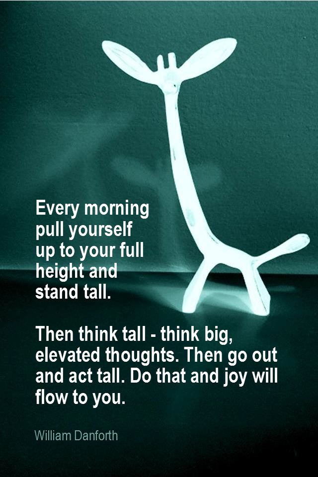 visual quote - image quotation for SELF-IMAGE - Every morning pull yourself up to your full height and stand tall. Then think tall - think big, elevated thoughts. Then go out and act tall. Do that and joy will flow to you. - William Danforth