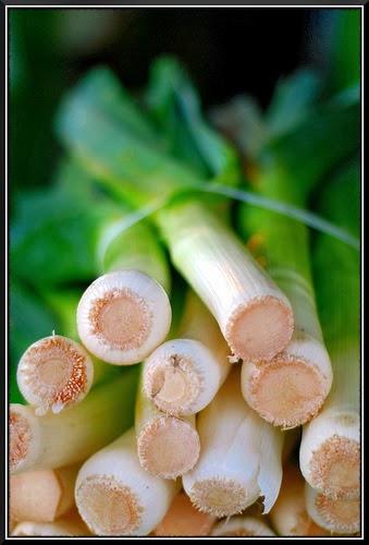 Recettes Fromages-Crottin de Chavignol à l'émincé de poireau