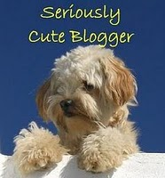 Seriously Cute Blogger Award