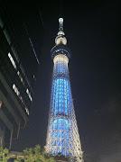 . を記念し、1995年の国連総会で制定された】 写真は東京スカイツリー (スカイツリー夜景)