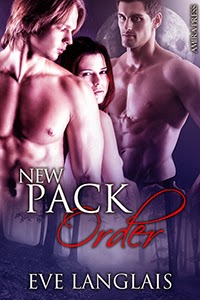 blogs when historical goes hot the best in erotic historical romance